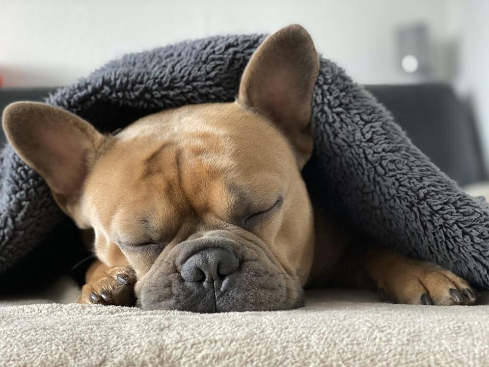 איך לישון? 4 עצות שיעזרו לך לישון