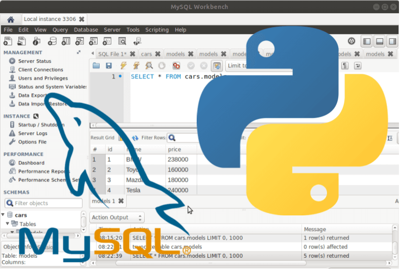 עבודה עם פייתון במסד נתונים mySQL